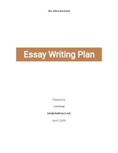 essay writing plan template