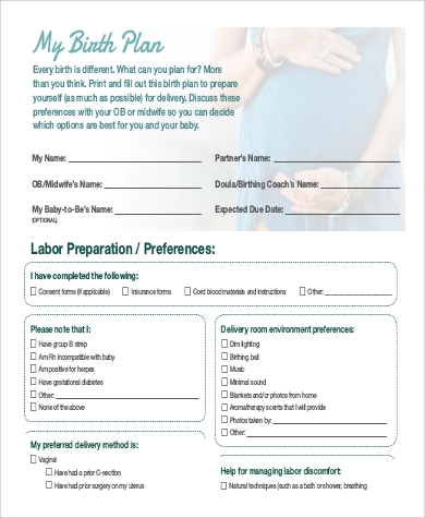 Sample Birth Plan   Examples In Word Pdf