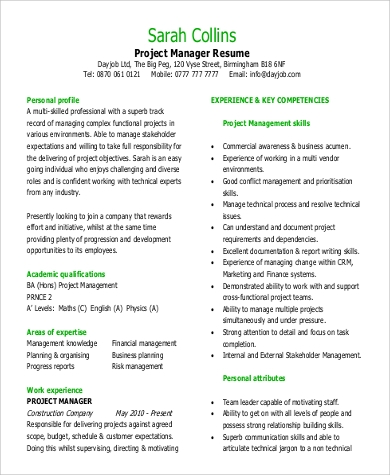 Project Manager Functional Resume Example