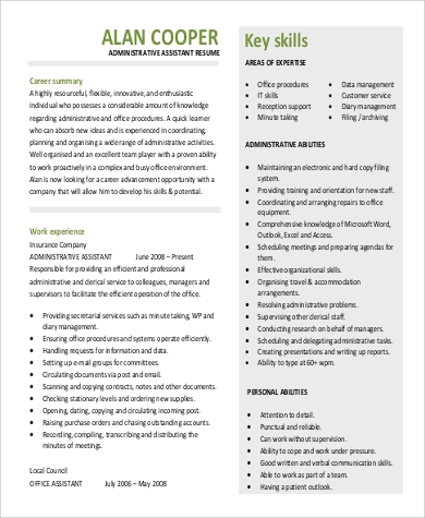 professional summary for resume sle 9 exles in
