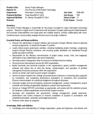 Sample It Project Manager Job Description - 9+ Examples In Word, Pdf