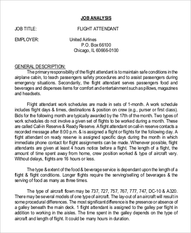 flight attendant job description in pdf