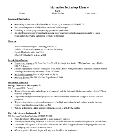 professional entry level it resume1