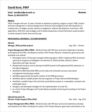 project program manager experienced resume