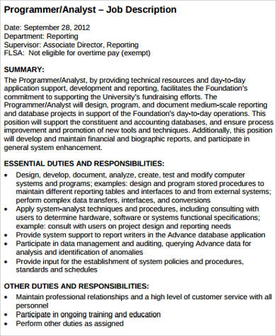computer analyst programmer job description example