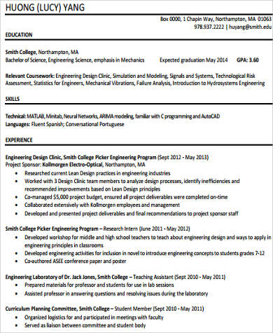 Sample Technical Skills Resume   Examples In Word Pdf