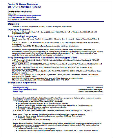Sample Senior Software Developer Resume
