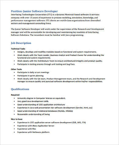 Sample Software Developer Resume   Examples In Word Pdf