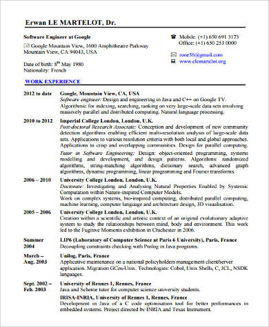 Software Developer Free Resume Samples Blue Sky Resumes Software