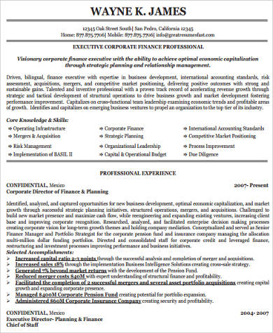 Insurance Executive Resume Sample Finance Resume Template And