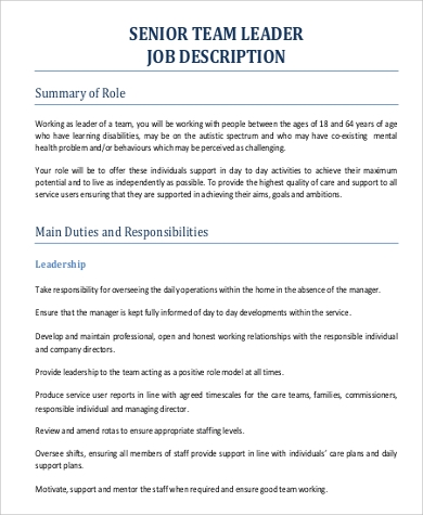 Team Lead Job Description Sample   Examples In Pdf