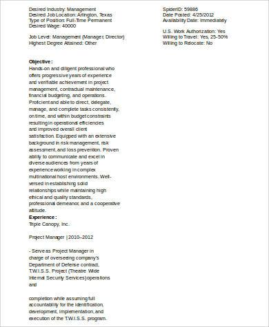 deputy program manager resume