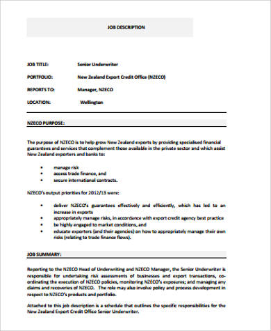 Underwriter Job Description Sample   Examples In Word Pdf