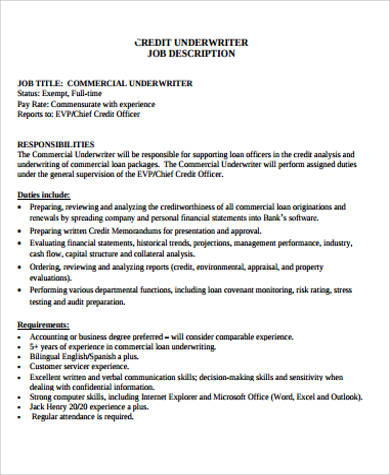 Underwriter Job Description Computer Systems Analyst Job