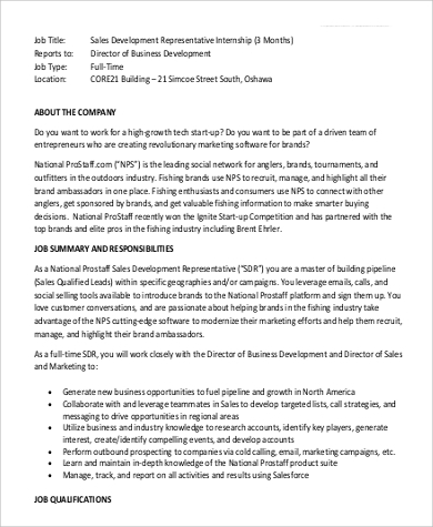 Sales Intern Job Description Sample   Examples In Pdf