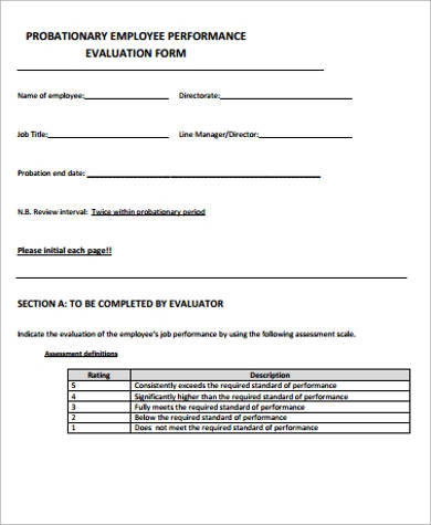 Sample Performance Evaluation Form   Examples In Word Pdf