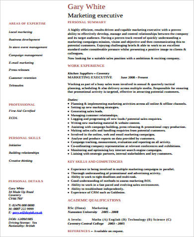 Executive Resume Sample - 9+ Examples In Word, Pdf
