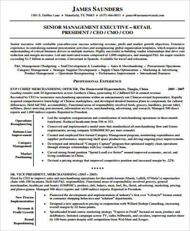 retail sales executive resume example