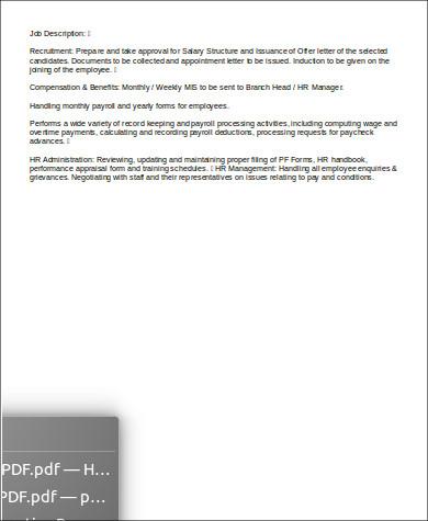 hr executive job description example