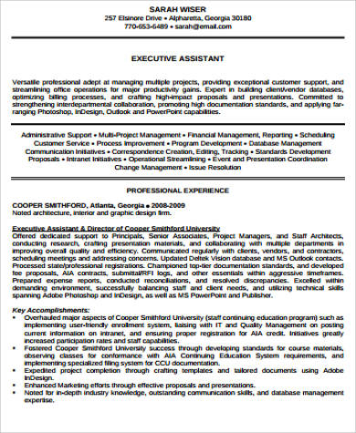 Sample Senior Executive Resume   Examples In Pdf