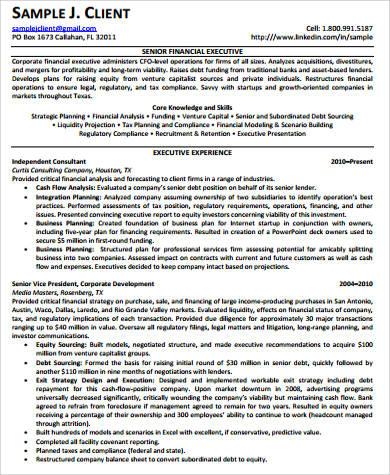 sample senior executive resume 8 examples in pdf