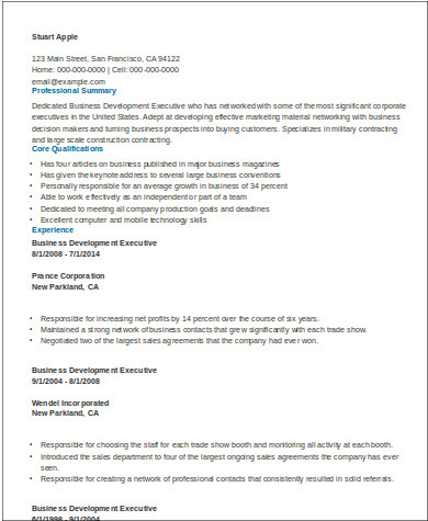 Sample Business Development Executive Resume - 8+ Examples in Word ...