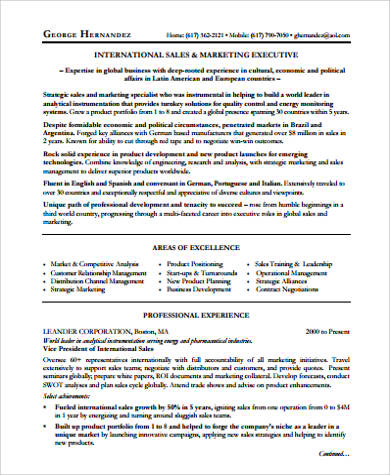 executive sales director resume in pdf