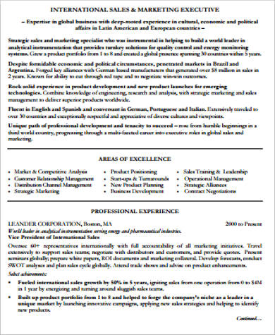 professional sales and marketing resume pdf1