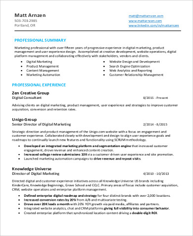 digital marketing director resume pdf