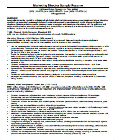 professional marketing director resume