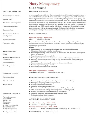 CEO Skills Resume Example Pdf  Ceo Resume Examples