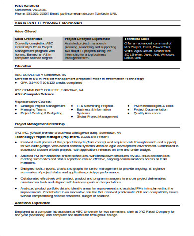 Sample It Manager Resume   Examples In Word Pdf