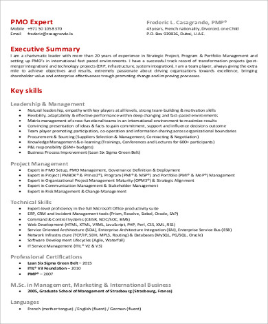Executive Resume Pdf Project Manager Resume Executive Summary In