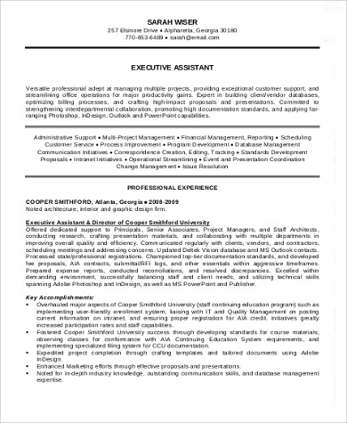 Sample Executive Summary Resume   Examples In Word Pdf