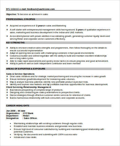 word sales executive resume