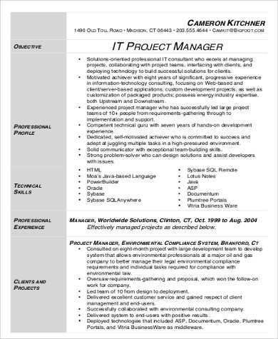 IT Project Manager Resume Sample Pdf