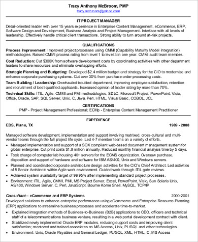 sle it project manager resume 9 exles in word pdf