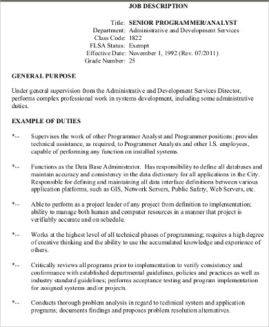 Programmer Analyst Job Description Sample   Examples In Word Pdf