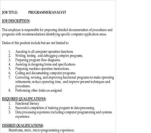 Sample Programmeranalyst Job Description