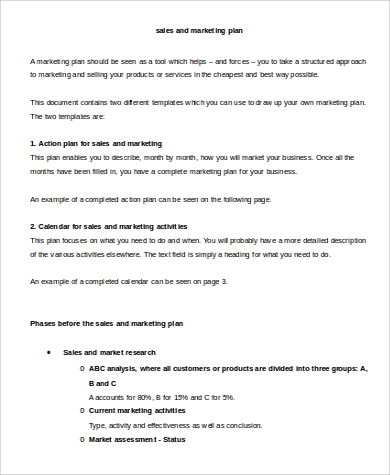 Sample Marketing Action Plan   Examples In Pdf Word