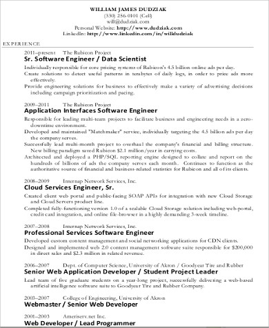 Sample Data Scientist Resume   Examples In Word Pdf