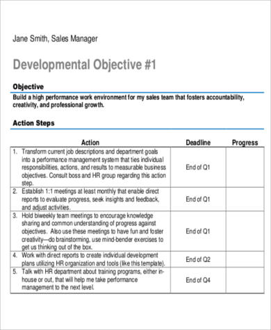 Sales Manager Action Plan In PDF