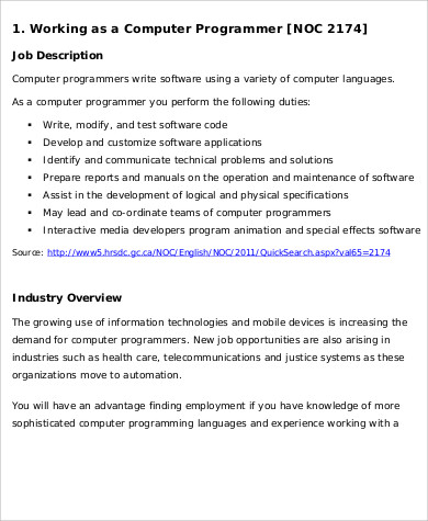Computer Programmer Job Description Sample   Examples In Word Pdf