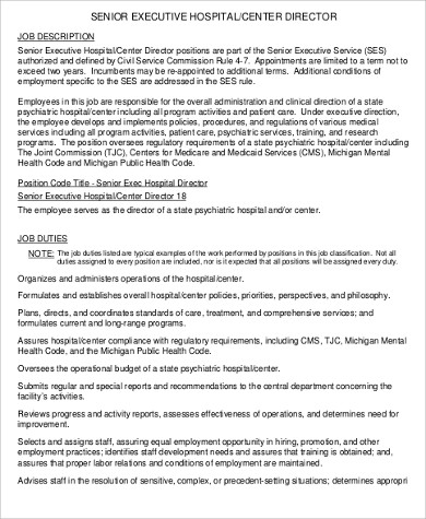 Senior Director Job Description Sample   Examples In Pdf