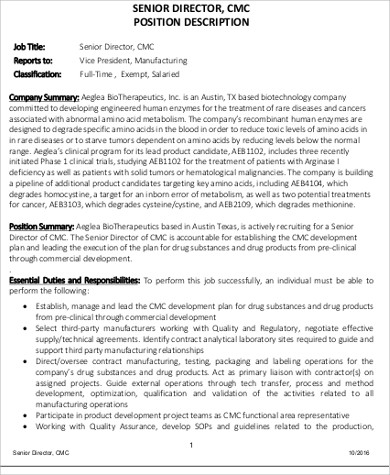 Senior Director Job Description Sample - 9+ Examples In Pdf