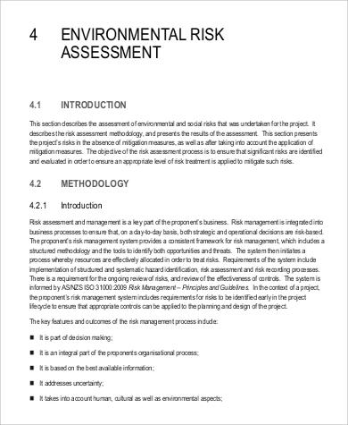 environmental risk assessment sample