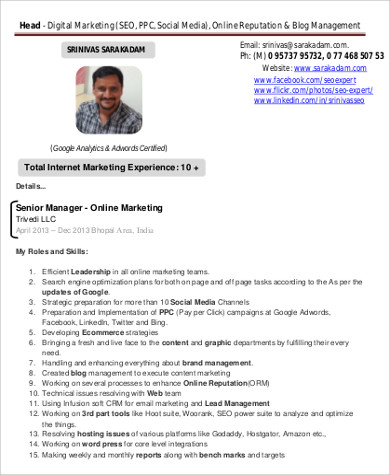 Sample Digital Marketing Resume   Examples In Word Pdf