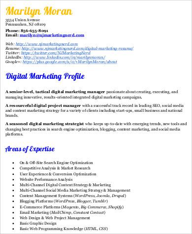 digital marketing resume example1