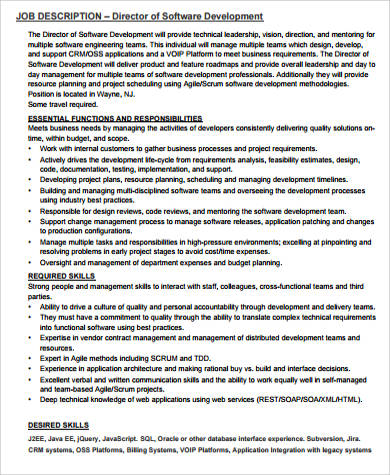Development Director Job Description Sample   Examples In Word Pdf