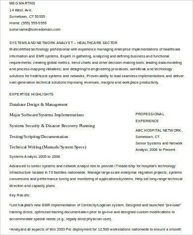 it professional resume example